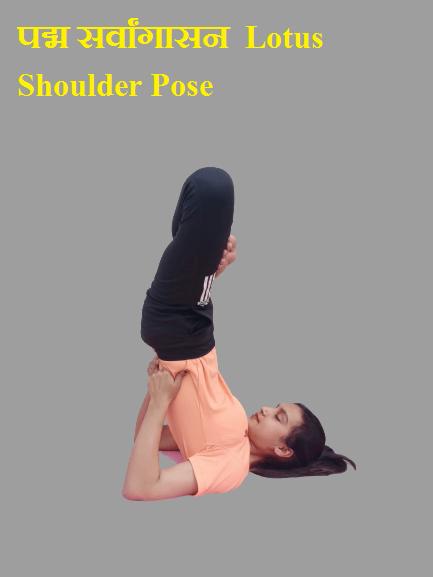पद्म सर्वांगासन (Padma Sarvangasana) Lotus Shoulder Pose