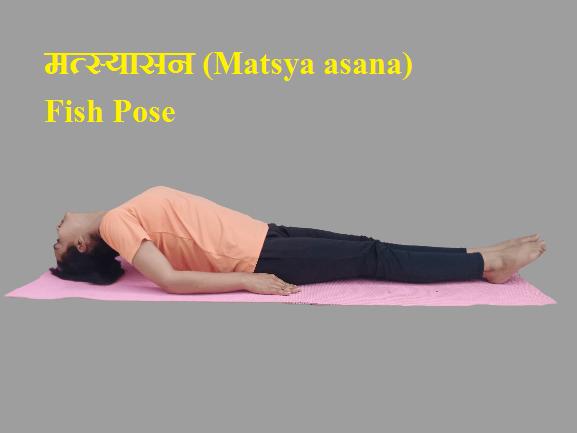 मत्स्यासन (Matsya asana) Fish Pose
