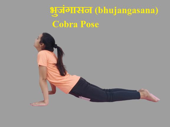 How to do Cobra  Pose (Bhujangasana) Step By Step | भुजंगासन  | Fitness With Nikita